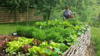 Le jardin ...